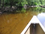 Canoe 6-6-09 013