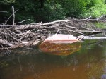Canoe 6-6-09 015